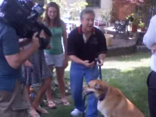 Jun25 bob%20camera%20dog A Real Life Dog Whisperer Robert Brandau on FOX