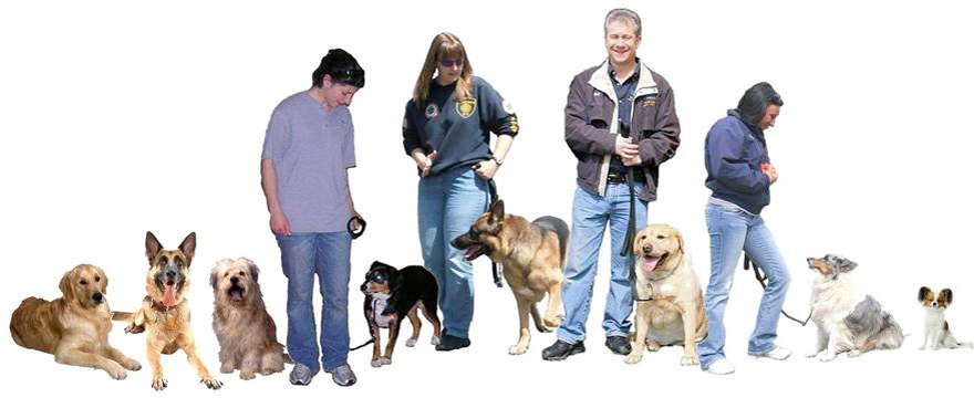 Dog Trainer Training