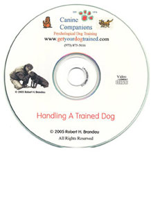 Handling a Trained Dog