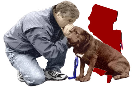 Dog Training in New Jersey