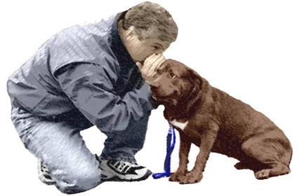 Dog Training New Jersey